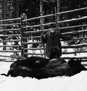 110 éve: Bölényvadászat a Magas-Tátrában